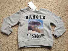 H&M Kid Boy Sweatshirt 4-6 Yrs 110/116 Gray INTERACTIVE DINO DANGER New