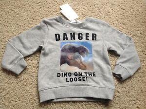 H&M Boy Sweatshirt 4-6 Yrs 110/116 Gray INTERACTIVE DINO DANGER New