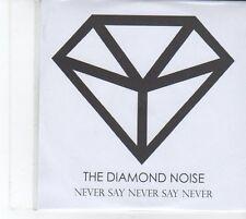 (EU372) The Diamond Noise, Never Say Never Say Never - 2012 DJ CD