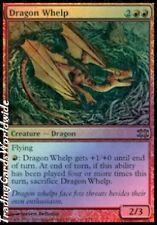 Dragon Whelp // Foil // NM // FtV: Dragons // engl. // Magic the Gathering