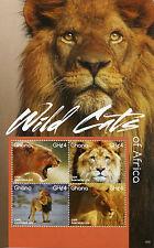 Ghana 2015 MNH Wild Cats of Africa 4v M/S II Wild Animals Fauna Lions
