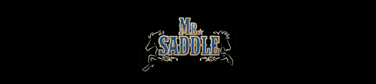 Mr.Saddle