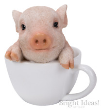 Vivid Arts - PET PALS PIGLET IN TEACUP & BOX - Piglet Pig