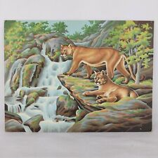 Mountain Lions Paint By Number Vintage Landscape Wildlife Waterfall 12 x 16