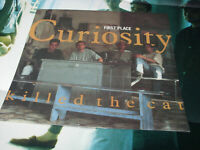 """Curiosity Killed The Cat – First Place   orig UK  12""""  EX+  with poster"""