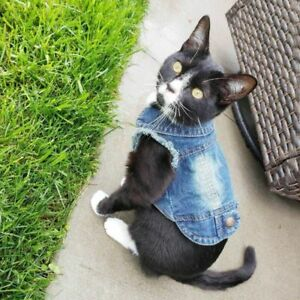 Pet Cat Coat Wash Denim Jacket Warm Outfit Lovely Casual Jeans Fashion Accessory