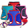 Pet Small Dog Harness and Lead Soft Mesh Puppy Cat Padded Vest Chihuahua Bue Red