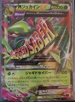 1x Pokemon Card XY7 Bandit Ring M Sceptile 008/081 RR 1st Ed Japanese NM