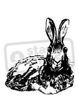 A7 'Laying Hare' Unmounted Rubber Stamp (SP00008106)