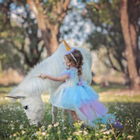 Christmas Gifts Childrens Girls Frozen Holiday Party Birthday Tutu Dress O137A