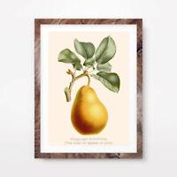 16 x 20 Framed Stainless Steel Fruit Bowl Metal Art Wall Decor