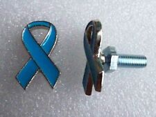 Prostate Cancer Awareness, lt blue ribbon license plate bolts,plated silvertone