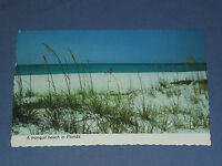 VINTAGE  TRANQUIL BEACH IN   FLORIDA  POSTCARD