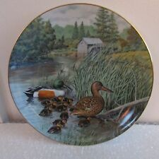"The Northern Shoveler, 8 1/2"" Knowles Duck Plate, Jerner, 1987, #1012E, Signed"