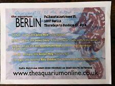 The aquarium Berlin,L13 gallery German shop poster 06. Billy childish sea horse