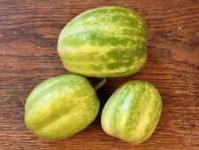 Liveseeds - Apple Cucumber Strange Fruit Cucumber 5 Seeds