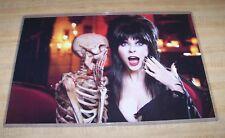 Elvira Mistress of the Dark 11X17 Poster Skeleton version