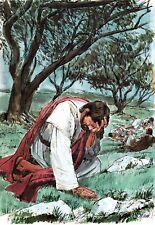 "Reprint - ""Prayer In The Garden"" By Richard Hook - On 11"" X 17"" Card Stock"