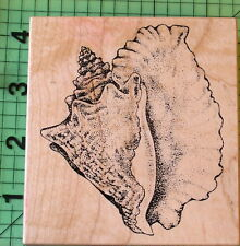 Sea Shell rubber stamp K-1449 by PSX Beach Ocean Nautical