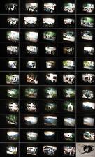 8 mm Film-Privat 1968.Algrund,Meran,Landeck Tirol-Wirtschaftswunder.Antique Film