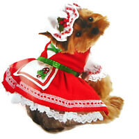 Pet Dog Candy Cane Cutie Costume Large