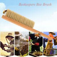 Beekeeper Equipment Beekeeping Bee Brush Protecting Bees Hive Clean Not Hurting