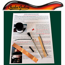Guitarra conductora Escudo blindaje Pintura *** 30ml Kit *** (ch50002)