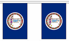 VIRGINIA U.S. STATE BUNTING 9 metres 30 flags Polyester flag
