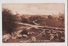 Royal Tunbridge Wells,U.K.View of Town from the Common,Kent,Used,1930