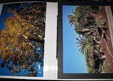 Ilford Großformat-Album Landschaften 26 Fotoabzüge 45x30cm
