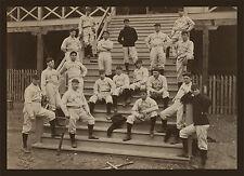 "1899 St. Louis Cardinals, Baseball, mlb, antique team photo, 20""x16"""