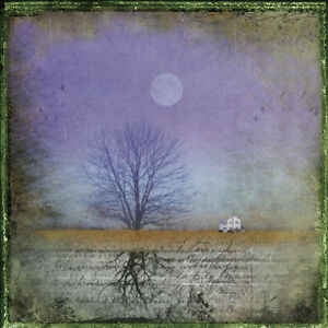 COUNTRY LANDSCAPE ART PRINT - Moonlight in Vermont by Dawne Polis - 12x12 Poster
