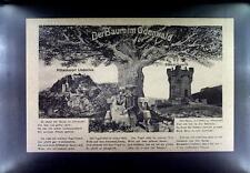 CPA Germany Odenwald Deutschland Baum Tree Lithography N25