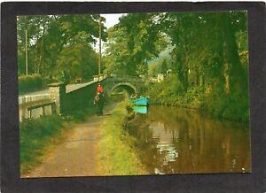 The Welsh Canal at Llangollen - Horse/Boat. Denbighshire, Wales. Publ:- J.Salmon