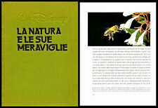 Walt Disney - LA NATURA E LE SUE MERAVIGLIE. Arnoldo Mondadori Editore 1981