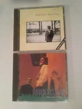 DAVID SYLVIAN 2 CD LOT- 'Brilliant Trees' & 'The First Day' (w/Robert Fripp)