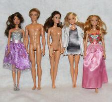 Barbie Fashionistas Doll Lot Teresa-Petite-Ken