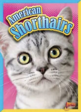 American Shorthairs by Nicki Clausen-Grace (English) Paperback Book Free Shippin