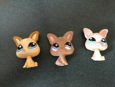 Littlest Pet Shop Lot 3 Chihuahua Dogs 837 461 1656 Cream Tan Fuzzy Flocked