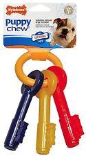 Nylabone Puppy Teething Keys Small Size Bacon Flavor Free Shipping