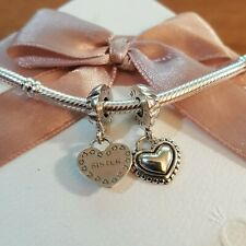 Pandora Silver My Special Sister Charms