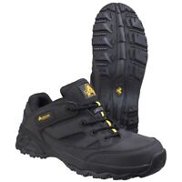 Amblers FS68C Metal Free Composite Safety Trainer |4-12|