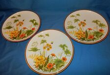 """Set of 3 Mikasa 10 1/2"""" Dinner Plates Natural Beauty Fresh From the Garden"""