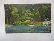 VINTAGE LINEN POSTCARD A SCENE IN FOREST PARK FORT WORTH TEXAS UNUSED