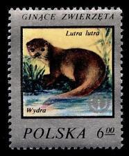 Flussotter. 1W. Polen 1977
