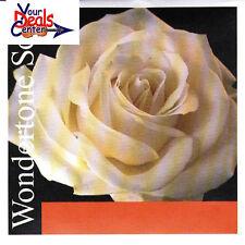 Wondertone Solo Violin E string 4/4 Silvery Steel Ball