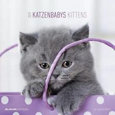 Katzenbabys 2019 Sabine Rath Kalender 14 S. Deutsch
