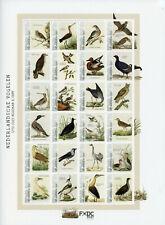 More details for st eustatius caribbean netherlands stamps 2021 mnh dutch birds nozeman 24v m/s