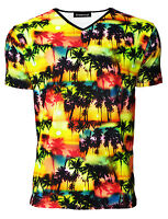 Men's Tropical Exotic Palm Trees Sunset Hawaiian Printed V-Neck T-Shirt Tee Top