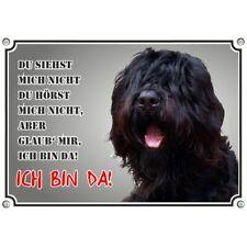 Hundeschild - Russischer Schwarzer Terrier - Premiumschild in Fotoqualität